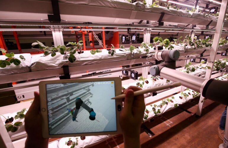 싱가포르, 국내 농업 및 수산업 육성 본격화